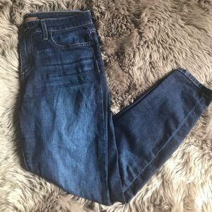 Joe's Jeans Mara Dark Wash Skinny Jeans, 29